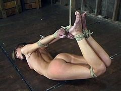 And this is a BDSM scene, my friend. No matter how charming Veronica Jett is, she is not going to get any mercy! So much pain in hogtie!