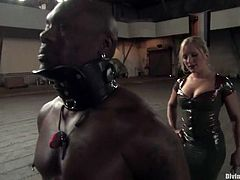 Sexy blonde girl in latex bodysuit ties Jack Hammer up. Later on she tortures his dick and sits on his face. She also toys her pussy with a vibrator.