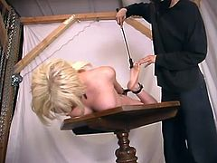 Petite blonde chick gets tied up and gagged by her master. Later on she gets her ass toyed and tits pinched with claws.