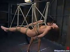 Sexy brunette dominatrix Tory Lane is having fun with Holly Wellin in a shed. Tory binds and beats Holly and then humiliates her and fucks her coochie with a strapon.