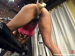 Naughty Black girl in pink lingerie stands on all fours getting her vagina drilled by the fucking machine. Then she rides some big dildo.