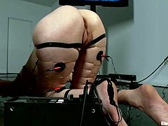 See the crazy fisting the redhead chick is getting in this lesbian domination video where she's also toyed and tortured.
