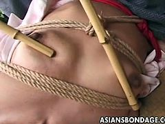 Watch this hot brunette Japanese chick is tied hard in this Asian Bondage video.her master plays with hot tits with a bamboo stick.He ties up this delicious Japanese chick and he ties her up good on the floor.It is all about humiliation for this cute girl who loses all control.