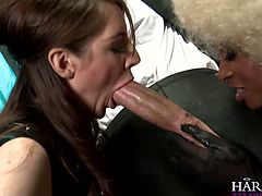Two naughty bitches blow one cock and get pussies licked. Enjoy watching hot and steamy Harmony Vision sex tube video for free.