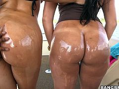 Watch this super hot and sexy latina babes exposing their busty and sexy and wet body forms for the camera in Bang Bros Network sex clips.
