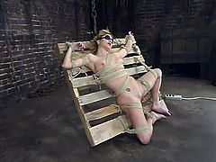 Stunning blonde girl gets her nipples pinched with claws. Then this tied up chick gets her wet pussy drilled rough by the fucking machine.