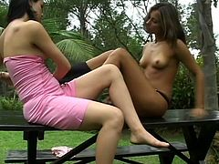 They are on the bench in the yard and this nasty and horny slut can not wait to lick pussy from that teen sexy lesbian and place dildo in her anus.