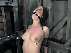 Slim brunette girl gets her tits tortured with claws and pumps. Later on she gets suspended and toyed with a vibrator.