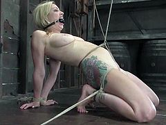 Stunning blonde chick gets gagged and hog tied by the man in a mask. Later on she gets her vagina tortured and toyed.