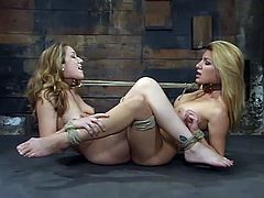 Jade Marxxx and Jenni Lee get undressed and tied up. Then the guy pinches their tits and toy their pussies with a vibrator. These hotties also lick each others pussies.