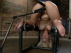 Sexy blonde milf Tara Lynn Foxx is having fun with some dude in a basement. She lets him immobilize her and then gets her holes stuffed with dildos and fucked remarcably well to orgasm.