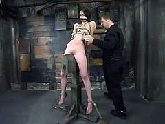 Adorable brunette girl gets tied up and tortured with steel claws fixed to her nipples. After that this babe gets her ass whipped and pussy toyed.