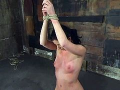 This juicy and slender siren Ariel X loves getting fucked hard! She gets tied up and suspended. Then her legs are spread with a bar and she wants some more humiliation!