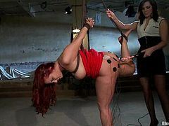 Curvaceous redhead chick gets her ass wired by Bobbi Starr. Later on Kelly gets suspended and toyed with a vibrator by her mistress.