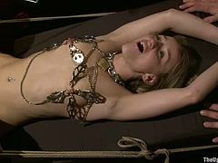 Stunning Holly Heart gets tied up and clothespinned. Later on she gets her pussy drilled with a fucking machine. Then she also gets fucked by horny guys.