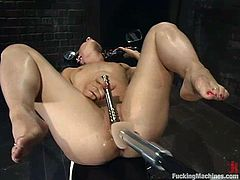 Lewd chick Dylan Ryan is having fun in a basement. She takes a fucking machine in her cunt and gets her snatch pounded like never before.