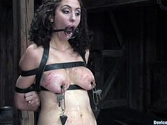 Blonde and brunette chicks strip their clothes off and then kiss. After that they get tied up and toyed with vibrators. In addition they get their pussies whipped with a stick.