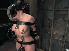 See the kinky action in this lesbian bondage femdom video with Satine Phoenix who is tied to a post and played with.