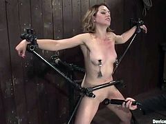 This kinky and sizzling babe Sarah Shevon is being trapped on the bondage device, which has a function of vibrating slave's twat.