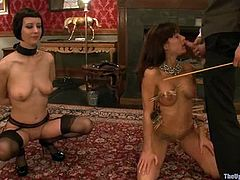 Tied up Cherry Torn and Gia Dimarco lick and toy each others pussies. After that they suck a cock and get their tits clothespinned.