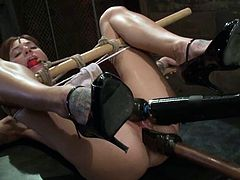 BDSM pleasures are what this divine sex slave Gia Dimarco wants! Honey gets tied up and her master staffs her beaver with two huge tools.