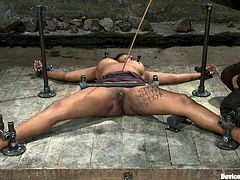 This petite ebony chick is so curvy! Honey gets naked and nailed on the floor, having her tits twitched and pussy drilled with toys.