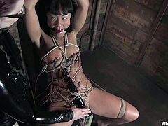 The exotic chick Jandi Lin goes through a bondage session by Claire Adams who uses sex toys to torture her with pleasure.