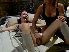 Tied up and gagged Zoe Voss lies on a bed. She licks Felony's vagina and then gets toyed rough with a strap-on.