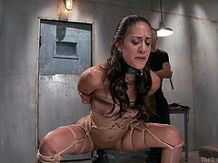 This sex master has taken Lyla Storm to the basement to show her pain and pleasure. She has a belt around her neck and rope wrapped around her arms and legs. The sex master takes the whips to her back and ass and then makes her sit on a sybian. She squats down and the sybians vibrates like crazy.