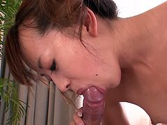 Adorable and young Japanese hottie Hazuki Okita provides small hairy dick with passionate blowjob. Check out how cute Jap bitch sucks tiny prick on POV video from Jav HD studios!