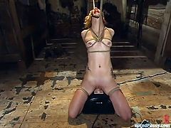 The girl in this rope bondage video is going to be toyed and placed over a Sybian to see if she can resist the orgasms.