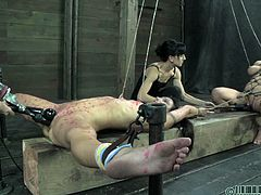 Darling and Wenona behaved like whores and now it's time for some real bondage. The fucking bitches are tied and the mistresses gives her best moves to induce as much pain as she can to them. One stays with her legs spread and get her cunt fucked with a dildo&a vibrator the other experiences a deep dildo fuck