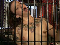 Krysta Kaos, Nerine Mechanique and one more girl are having some fun with a few guys in the living room. The dudes put one of the girls into a cage, hang up the second and make the third kneel in front of them.
