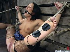 Hot Katja Kassin lies on the floor being tied up by her mistress. Later on she gets her wet pussy toyed with an electric dildo. After that she gets her boobs and pussy hit with electricity.