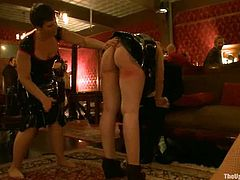 Two hot chicks get tied up and toyed in bondage video