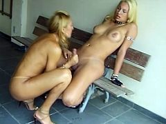Here they are! Two smoking hot blond shemales with huge cocks to give each other! Oral sex begins the show and sluts stun so hard.