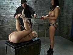 Pigtailed blonde girl lies on a wooden box being hog tied. She gets her pussy toyed with a strap-on and then fisted by the mistress.