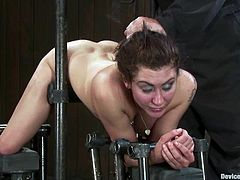 Princess Donna Dolore lets horny mistress Isis Love and her handsome assistant shackle her in a basement and play with her holes. Isis and the man immobilize Donna and then fuck her mouth and juicy cunt.