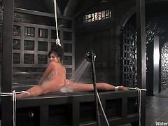 Gianna is the kind of hot slut that any man wants to stick his cock in her pussy. Because she's so fucking hot and had so many cocks in her we thought that she could use a nice, long shower here at water Bondage. After he tied her up and secured her she received a powerful water jet between her thighs and much more