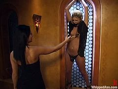 Sandra Romain is a new princess of BDSM kingdom and she desires to torture and have some passion with that divine blond doll Alicia Silver.