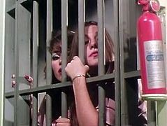 Horny hookers are locker in jail. Those dirty sluts get horny and order one girl to lick their soaking wet hairy pussies.