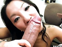 Asa Akira takes snake in her hands cause her man is never enough