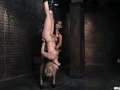 Slender blonde babe gets hung up upside down and clothespinned. After that she sucks a strap-on and gets toyed deep in her soaking pussy.