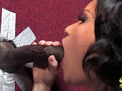 This hot chick in stockings are horny and wet and she need that black dong badly. First she sucked that cock and then let him to nail her cunt.