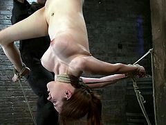 Curvaceous chick gets hog tied and suspended. Later on the master drills her vagina with a big dildo.