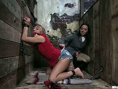 Blonde Lexi Love gets clothespinned and toyed by Sandra Romain
