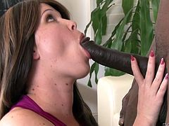 Sasha Knox blows BBC and gets banged really hard