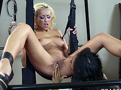 Lustful raven haired bitchy chick fucks her blond curvy sexdoll with strapon