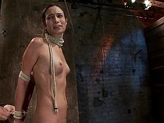 Yes, this is a damn BDSM, which is like a fucking horror movie! It's fun watching and at the same time it is quite nasty! So you choose.