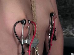 The bondage fun in this lesbian video includes other different stuff like nipple torture with electrical devices and anal toying.